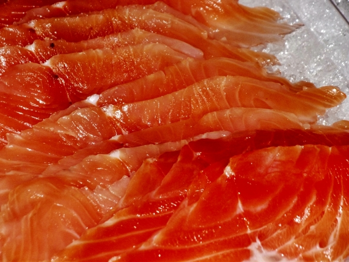 Gravad Lax, Salt-Cured Salmo salar