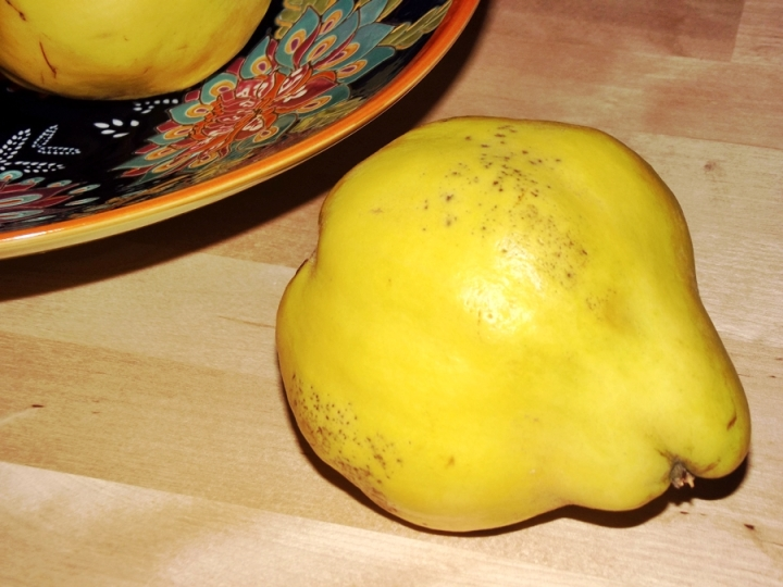 Quince (Cydonia) Fruit