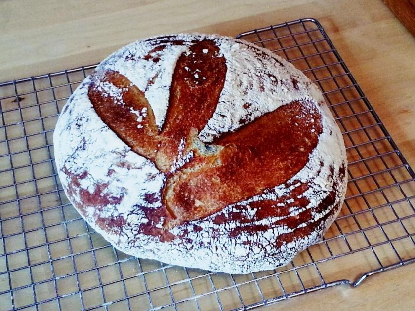 Cold Ferment Bread