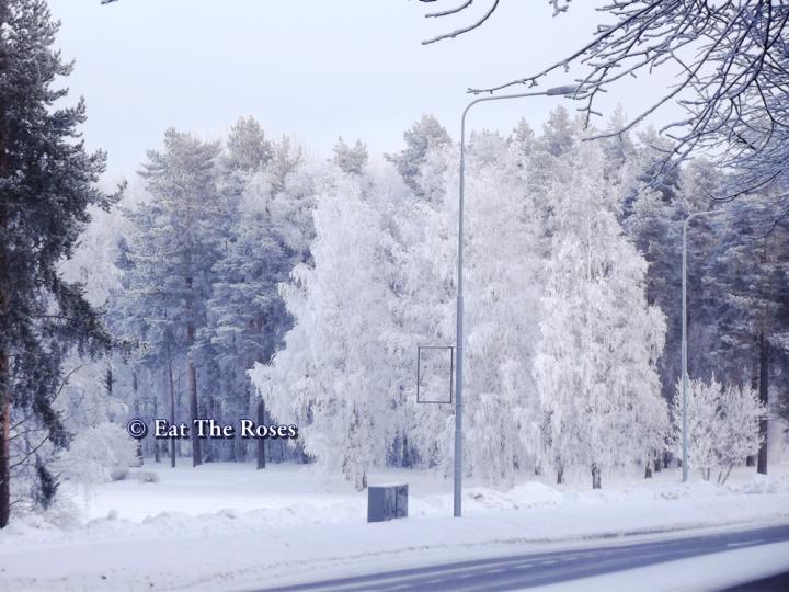 Snowy street ETR